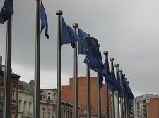 União Europeia alerta<br> Declínio alarmante dos peixes de água doce, moluscos e plantas