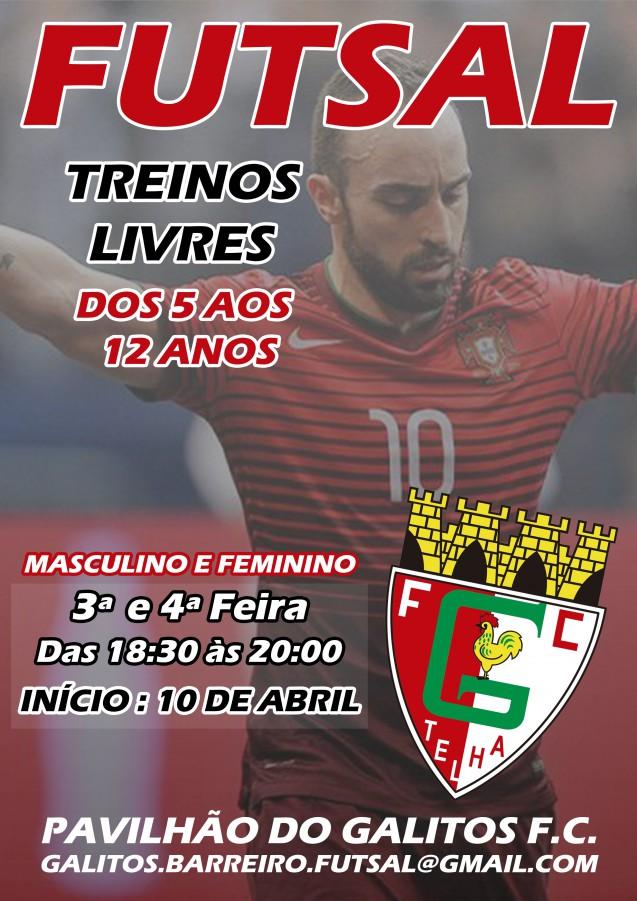 Barreiro - FUTSAL no Galitos Futebol Clube Participa nos Campeonatos  Distritais de Setúbal na época 2018 2019 7cc19cd7e1b6c